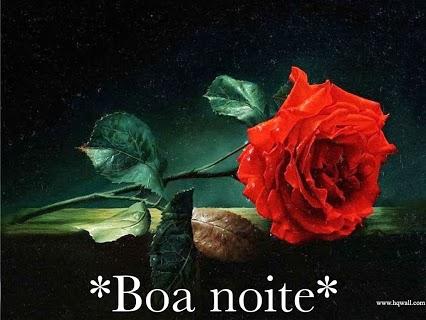 Flower_886823-766994