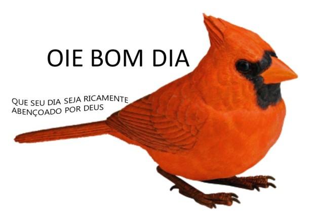 BB,DIIA